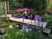 rms-backyard_water-feature-bridge-waterfall-flowers-tdnuss_s4x3_lg.jpg