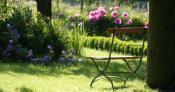 tenelubivye-tenevynoslivye-mnogoletnie-cvety-sada-8.jpg