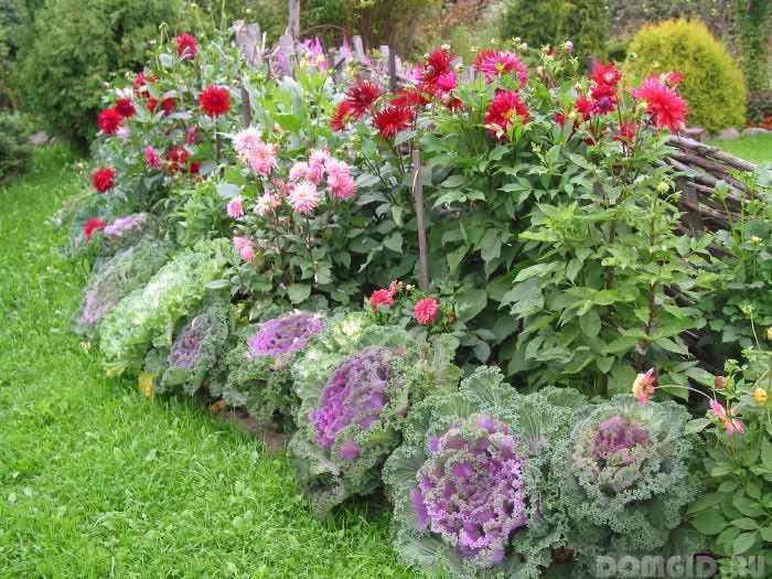 Растения и вписать в ландшафтный
