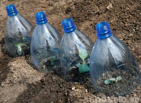 Дорожка из пластиковых бутылок своими руками