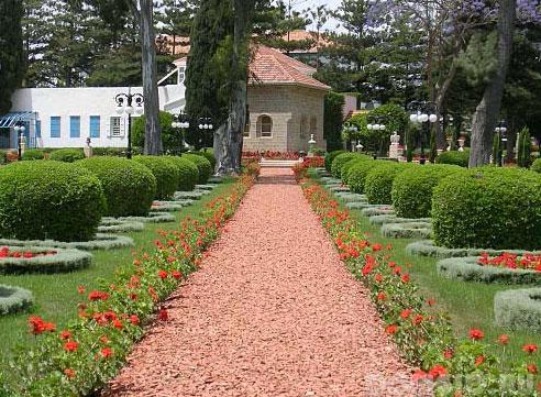 Оформление садовых дорожек цветами фото